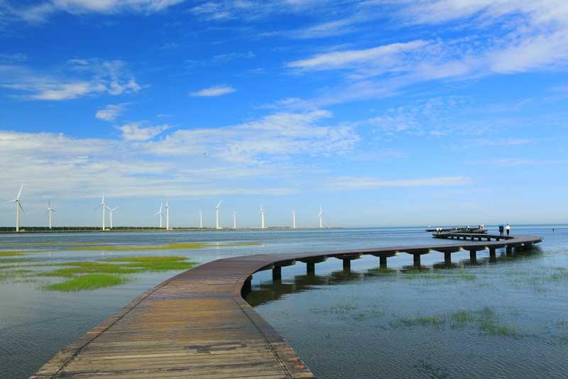 高美濕地—延伸入海的木棧道
